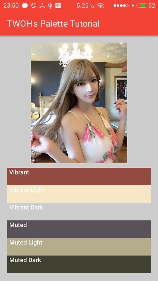 Palette dari gambar yang tidak ada Vibrant Dark