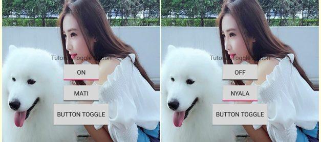 Tutorial Membuat Toggle Button di Android dengan Android Studio